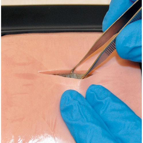LifeLike BioTissue Double Layer Skin