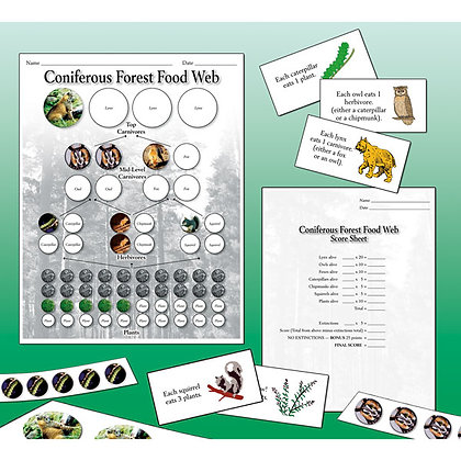 Food Web Collapse Game