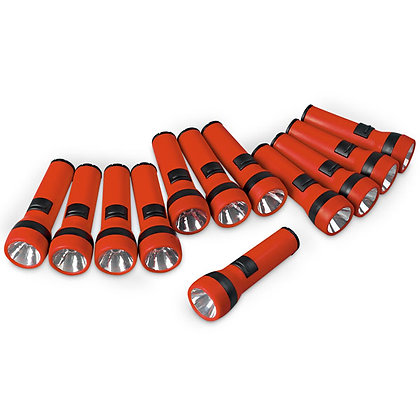 Flashlight Classroom Pack, Pack of 12