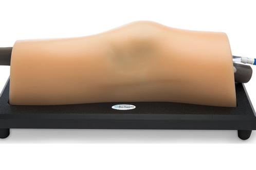 Blue Phantom™ MSK Knee Model