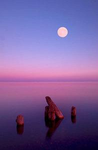 Purple Moonrise