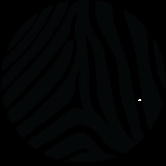 zebra circle.png