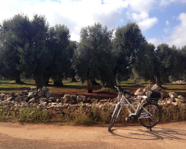Puglia2.jpg
