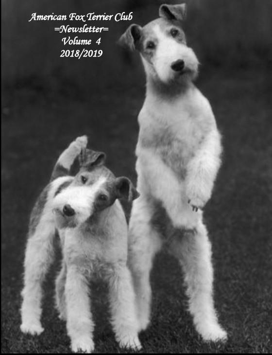 2019/2018 Vol 4 Newletter