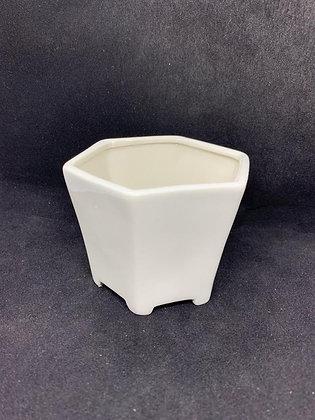 Pot #49 - (8x6cm)