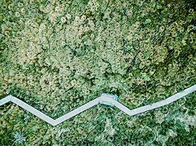 Luchtfoto van een veld