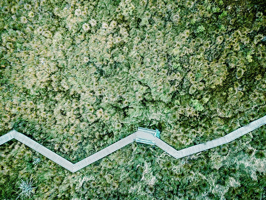 Luftbild von einem Feld