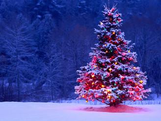 Команда URS-Russia поздравляет вас с наступающим Новым Годом!