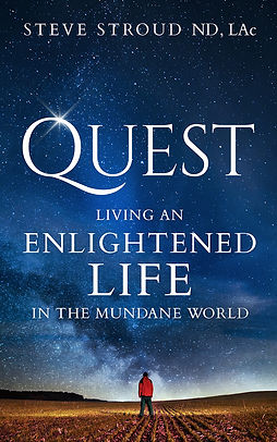 QUEST book cover.jpg