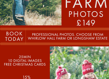 Christmas Photo Sessions at Whirlow Farm and Longshaw Estate