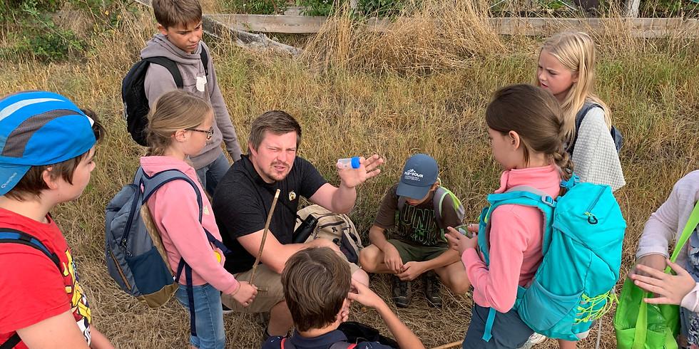 """Stage """"naturaliste en herbe"""" pour jeunes de 7 à 12 ans (1)"""