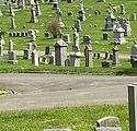 CemeteryWOFox.jpg