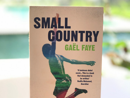 BOOK REVIEW - SMALL COUNTRY
