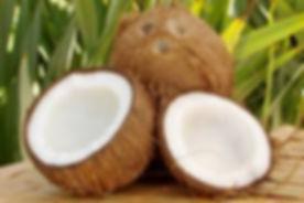 coconut images 2.jpeg