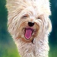 Dog in Pastel
