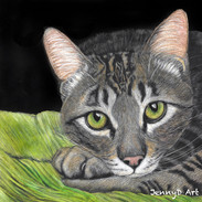 Tabby Cat on Green Cushion