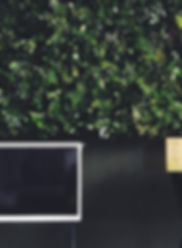 GQ living wall.jpg