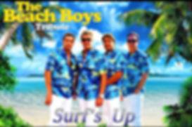 Beach Boys Tribute Band Danny Goldberg