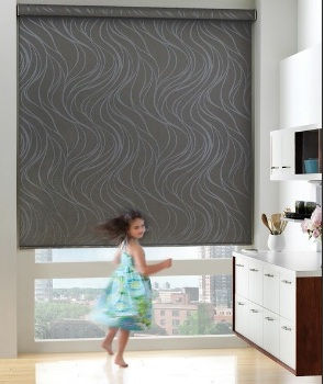 Hunter Douglas Literise Cordless Roller Shades: Lifetime Blinds
