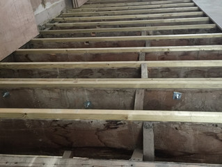 Back to Holland Park
