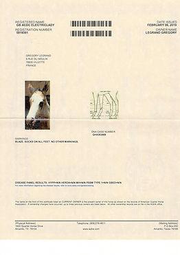 acdc papier 1.jpg