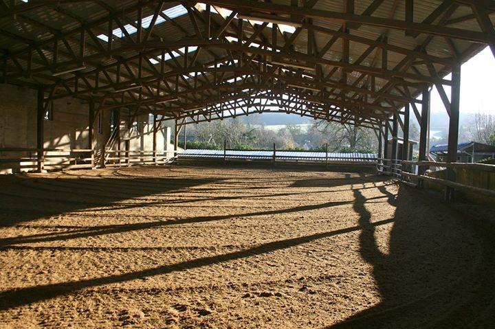 gb quarter horse_indoor arena_equipe d'un sol specialement pour du reining