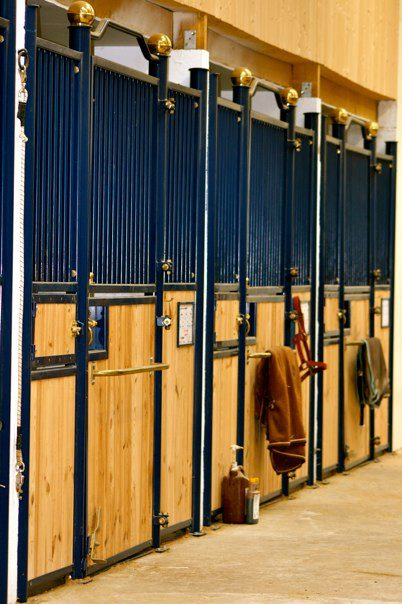 GB Quarter horse dispose 50 boxes pour des chevaux