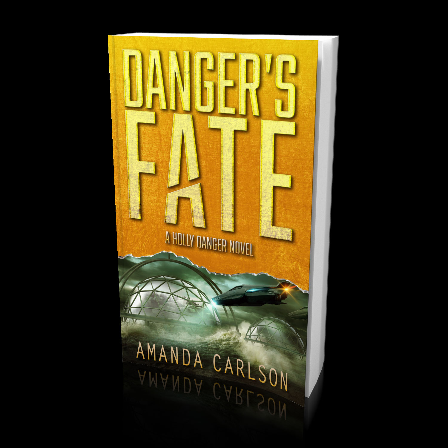 Danger's Fate: Book 6