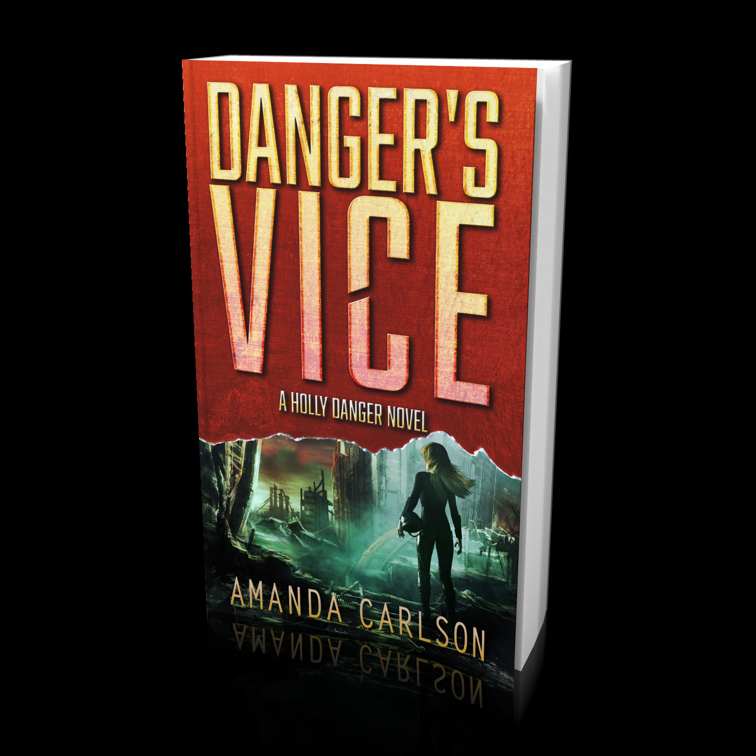 Danger's Vice: Book 2