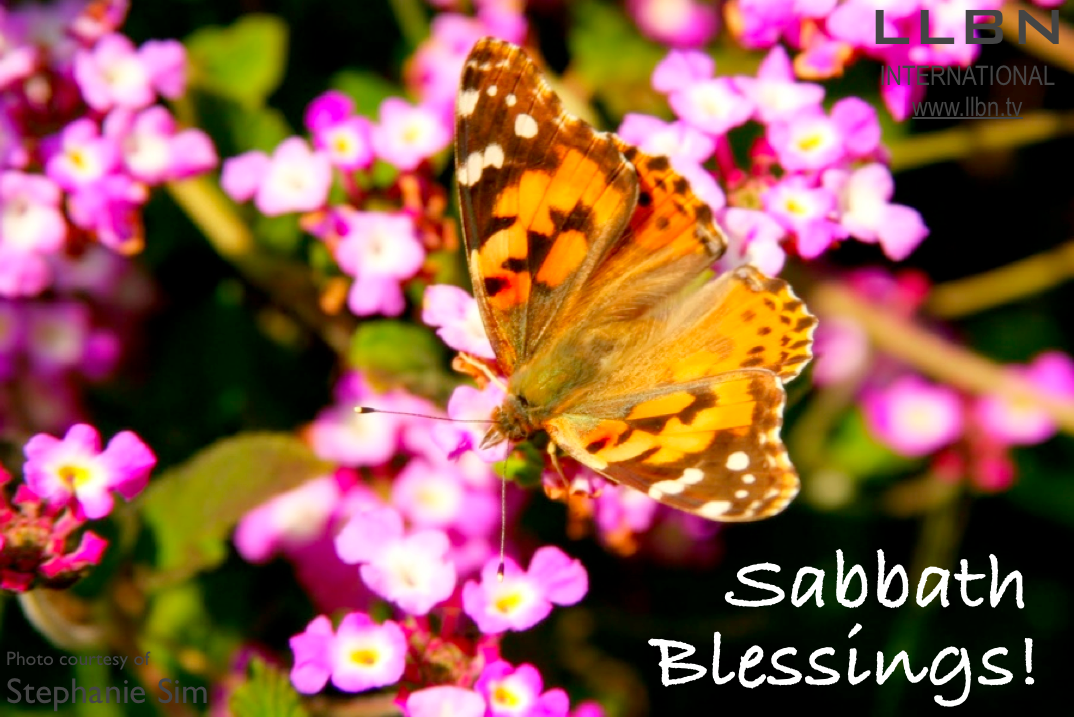 Psalm 34:8 (NKJV