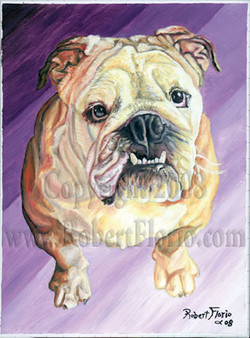"""Bulldog"""