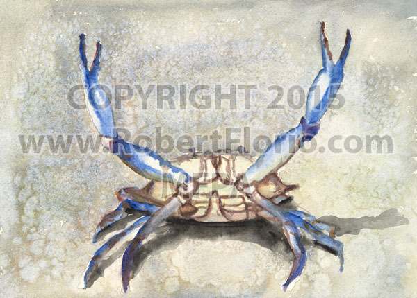 Crab-Copyrt