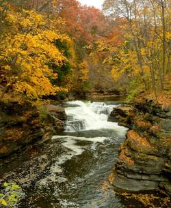 Ithaca_Hemlock_Gorge