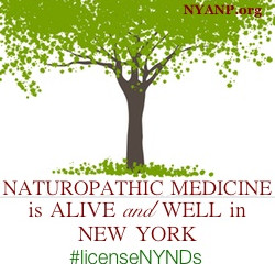 Please help license Naturopathic Doctors in New York State!