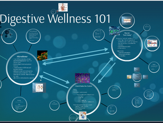 Digestive Wellness 101 - Link to presentation by Dawn Eller, ND, CNS at FingerLakes School of Massag