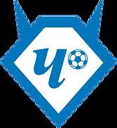 FC_Chertanovo_logo.png
