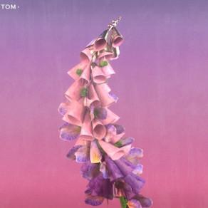 Flume Album Art Replica