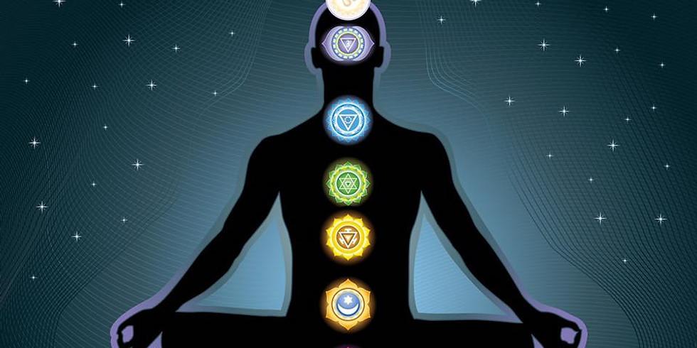 Guided Chakra Meditation with Shane Knox