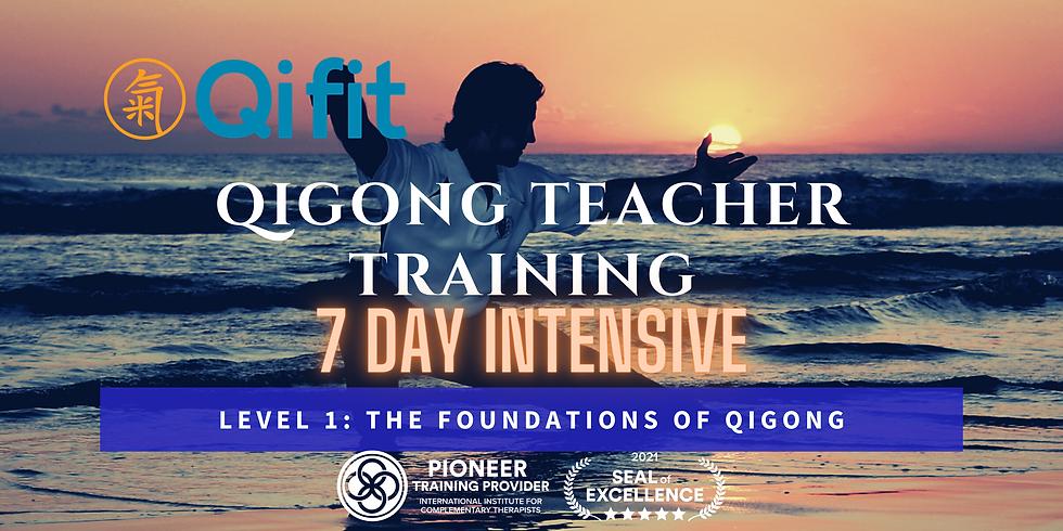 Qigong Teacher Training Intensive