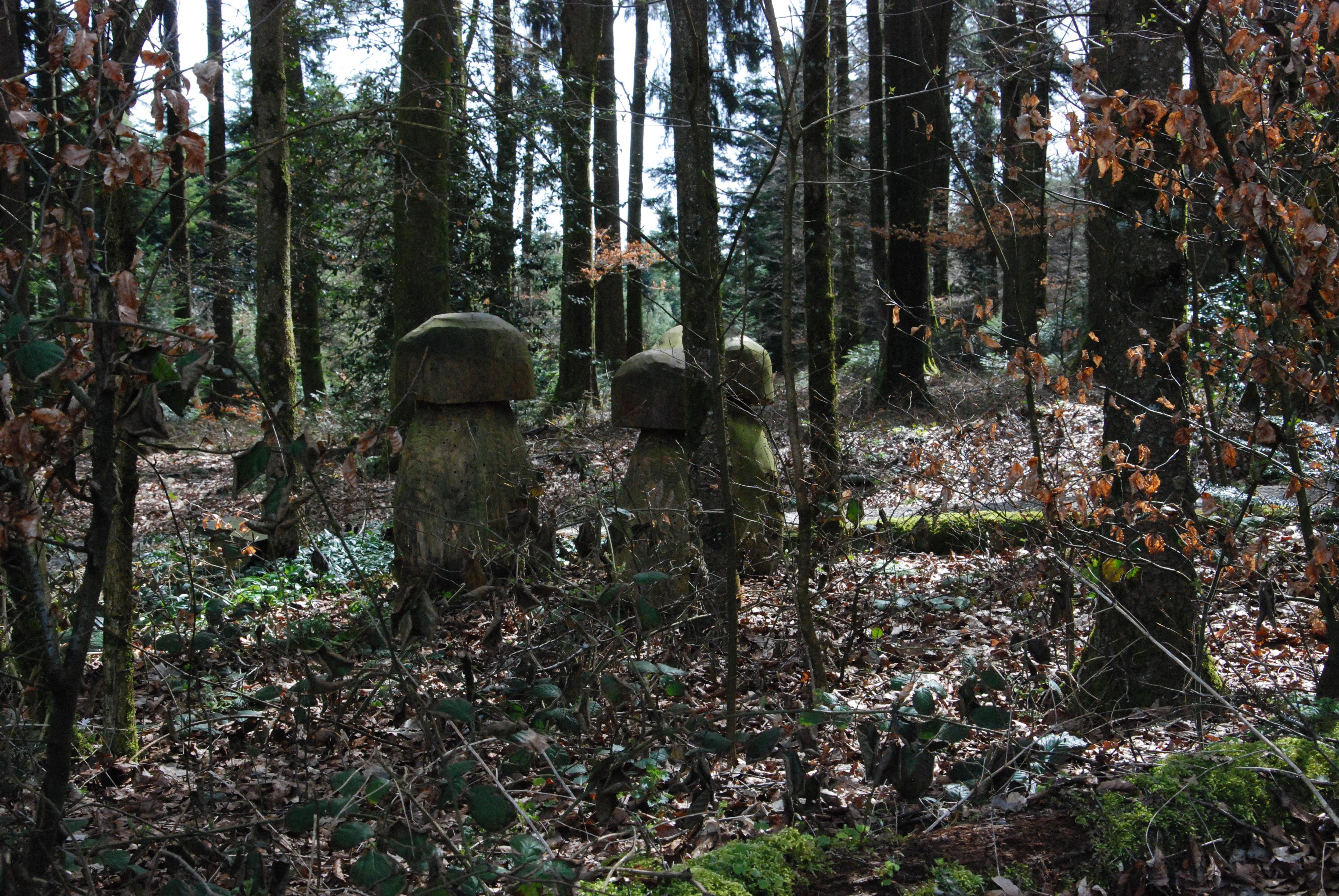 Wald Impression