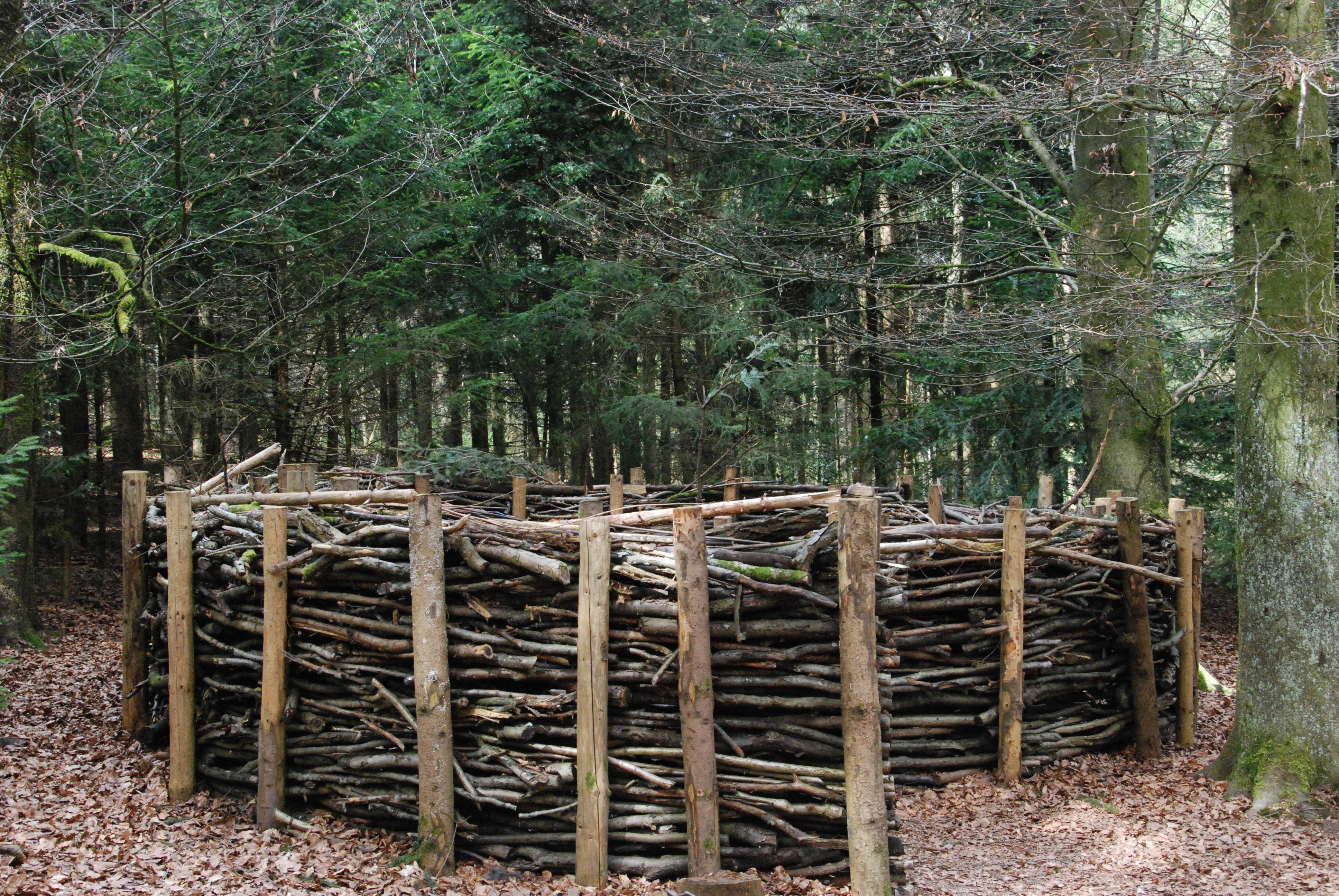Waldnest aussen