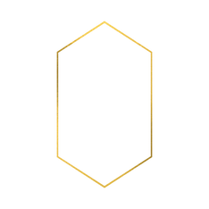 Untitled design (80).png