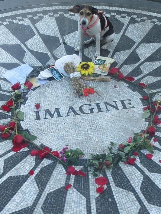 photo - GA at Lennon memorial.jpg