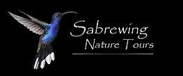 Sabrewing+Logo+2.jpg