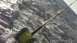 Big game fishing in Portugal