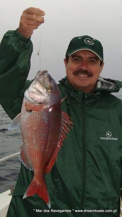 Fishing trip in Lisbon, red snaper