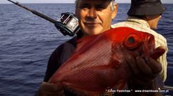 Deep sea Fishing trip in Cascais