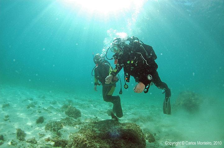 Diving in Cascais