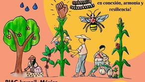 8vo. Intercambio Juvenil Internacional por la Soberanía y Seguridad Alimentaria