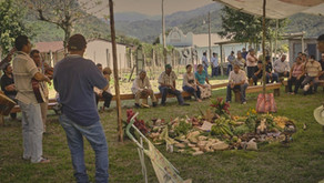 El día nacional del Maíz Nativo como celebración de los pueblos de maíz